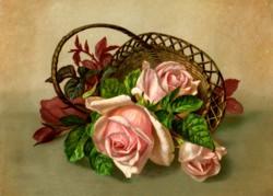 rose-card