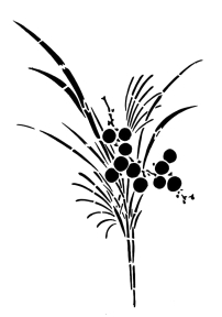 plants-06