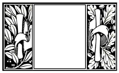 frame-2a