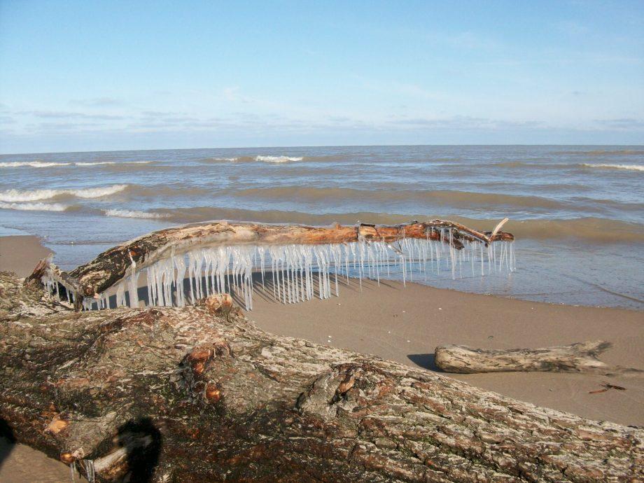 Mar-24-2011 015