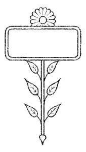 flower-frame-1899