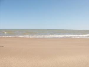 Beach032610 005