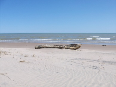 beach032610-014