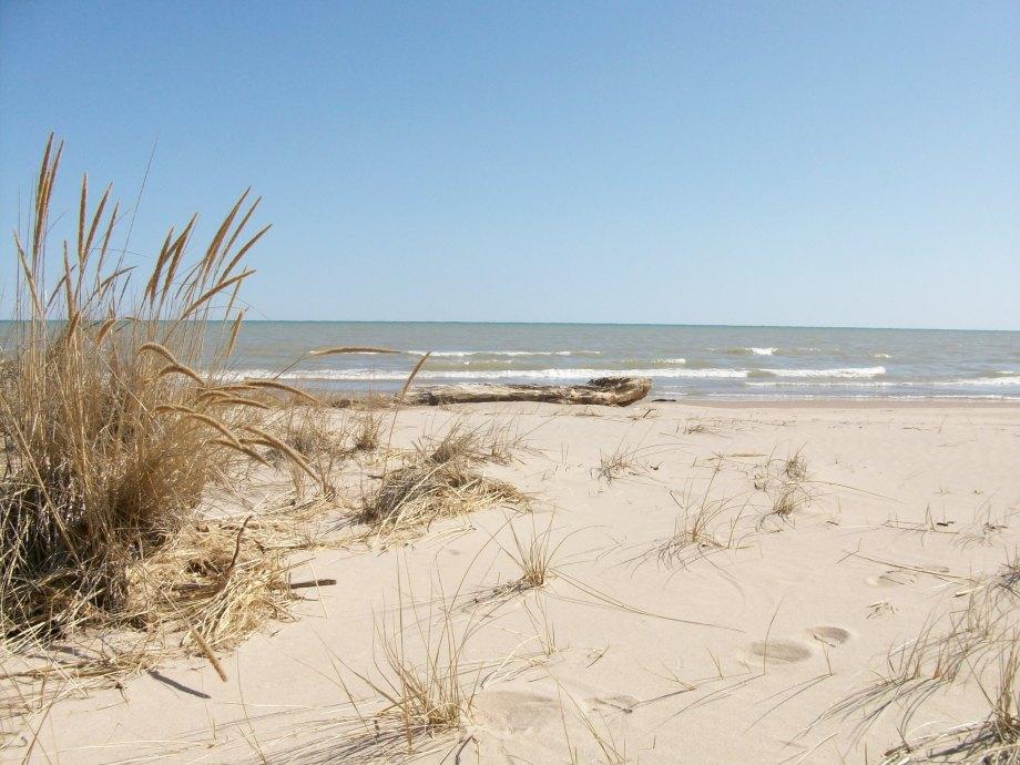 Beach032610 016