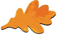 oak_leaf_fall