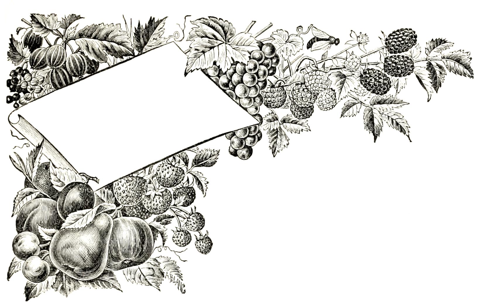 fruit-heading