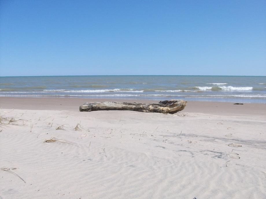 Beach032610 014
