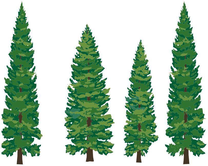 pine_trees